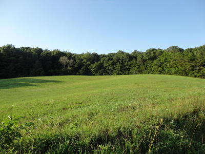 Residential Lots & Land For Sale: Bent Rd
