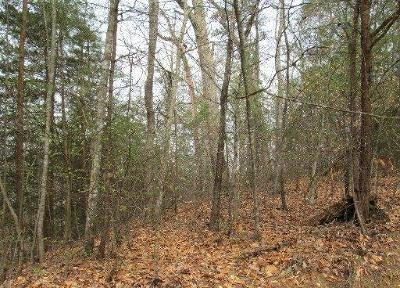 Union County Residential Lots & Land For Sale: Lot 77 Grandpas Rdg Rd