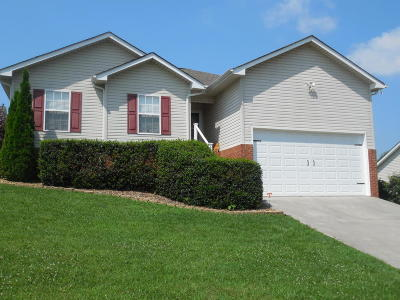Knoxville Single Family Home For Sale: 3939 Mountain Vista Rd