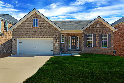 Knoxville Single Family Home For Sale: 8606 Oxford Drive