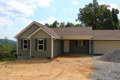 Maynardville, Andersonville, Powder Springs, Sharps Chapel, Speedwell, Washburn Single Family Home For Sale: 207 Covenant Lane