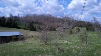 New Tazewell Residential Lots & Land For Sale: Snodgrass Rd