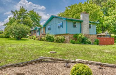 Sevierville Single Family Home For Sale: 310 Hollywood Circle