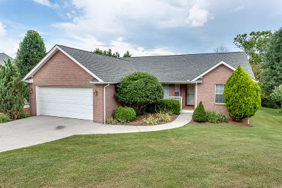 Corryton Single Family Home For Sale: 7530 Wilderness Path Rd