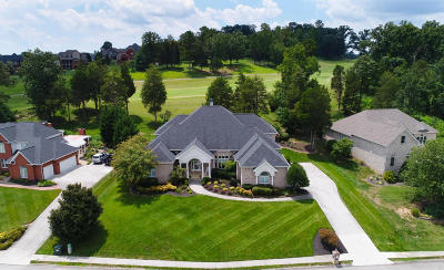 Lenoir City Single Family Home For Sale: 810 Timberline Drive