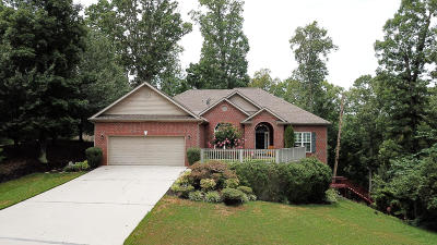 Loudon Single Family Home For Sale: 162 Tommotley Drive