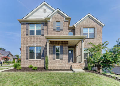 Knoxville Single Family Home For Sale: 2232 Mystic Ridge Rd
