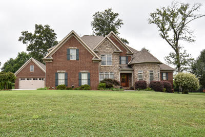 Maryville Single Family Home For Sale: 115 Charles Earl Lane