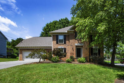 Knoxville Single Family Home For Sale: 1205 Newfane Circle