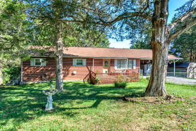 New Tazewell Single Family Home For Sale: 122 Shelby Loop