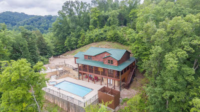 Sevierville Single Family Home For Sale: 159 Bob Hollow Rd