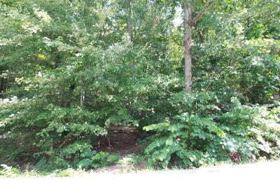 Fairfield Glade Residential Lots & Land For Sale: 114 Meadowview Drive