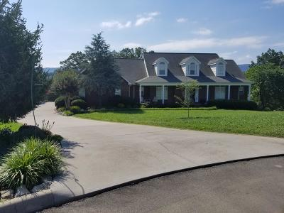 Maryville Single Family Home For Sale: 1580 Mint Meadows Drive