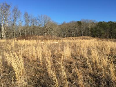 Lenoir City Residential Lots & Land For Sale: 6372 Waller Ferry Rd