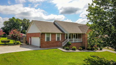 Maryville Single Family Home For Sale: 1008 Summerfield Drive