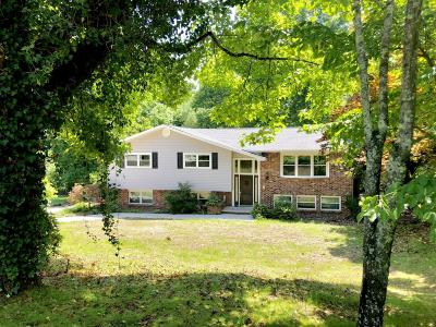 Oliver Springs Single Family Home For Sale: 135 Richards Drive