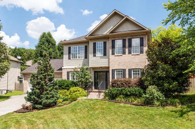 Knoxville Single Family Home For Sale: 2132 Willow Creek Lane