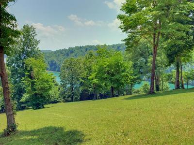 Residential Lots & Land For Sale: Deer Ridge Ln Lot 3 Lane