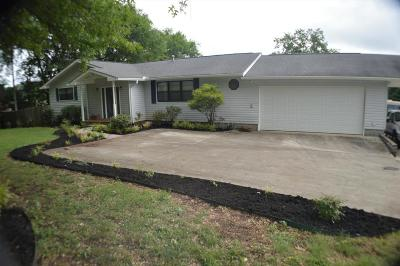 Seymour Single Family Home For Sale: 648 Chilhowee School Rd