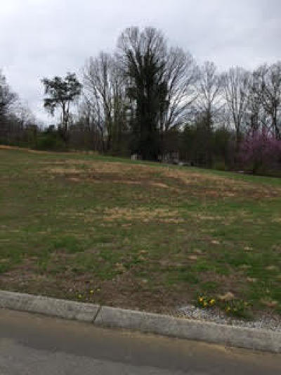 Blount County, Loudon County, Monroe County Residential Lots & Land For Sale: 641 Berrywood Drive
