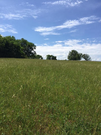 Blount County, Loudon County, Monroe County Residential Lots & Land For Sale: 644 Berrywood Drive