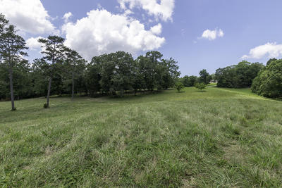 Residential Lots & Land For Sale: Lot 8 Youngs Creek Way
