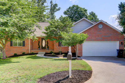 Knoxville Single Family Home For Sale: 3950 Mountain Vista Rd