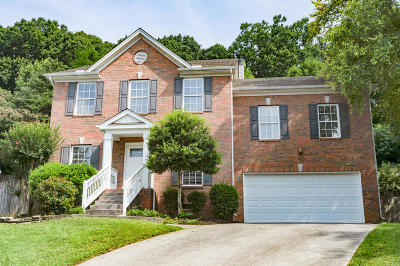 Knoxville Single Family Home For Sale: 700 Station View Rd