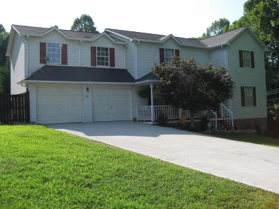 Caryville Single Family Home For Sale: 108 Jordan Drive