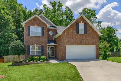 Knoxville Single Family Home For Sale: 3304 Grassy Pointe Lane