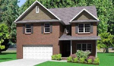 Knoxville Single Family Home For Sale: 6943 Holliday Park Lane