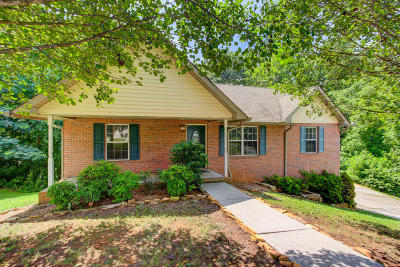 Knoxville Single Family Home For Sale: 600 Liverpool Lane