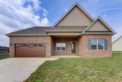 Sevierville Single Family Home For Sale: 1223 Beaumont Ave