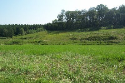 Oak Ridge Residential Lots & Land For Sale: 140 Pineberry East Rd #Lot 172