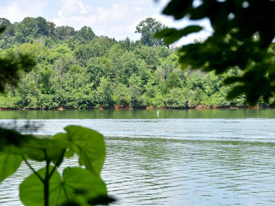 Knoxville Residential Lots & Land For Sale: Williams Bend Rd
