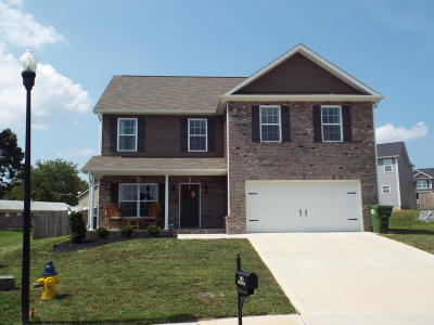 Maryville Single Family Home For Sale: 240 Whistlestop Lane