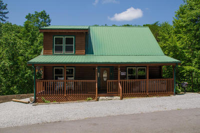 Sevierville Single Family Home For Sale: 829 Boone Acres Way
