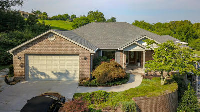 Maryville Single Family Home For Sale: 3213 Indian Wells Drive