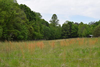 Grainger County Residential Lots & Land For Sale: 23.96 Ac Tater Valley Rd