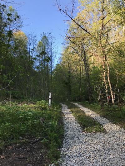 Luttrell Residential Lots & Land For Sale: 587 Texas Hollow Rd