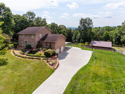 Knoxville Single Family Home For Sale: 11764 Black Rd