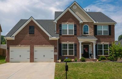 Knoxville Single Family Home For Sale: 12405 Turkey Crossing Lane