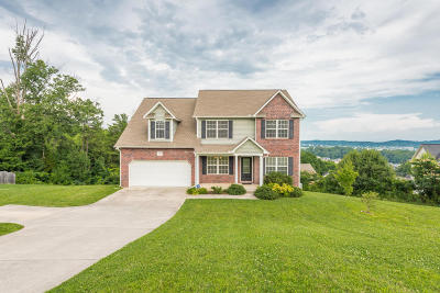 Knoxville Single Family Home For Sale: 1164 Snyder Ridge Lane