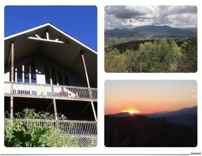 Gatlinburg Single Family Home For Sale: 1433 Garrett Place