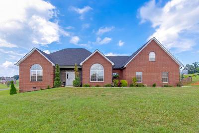 Sevierville Single Family Home For Sale: 1515 Laurel Falls Lane