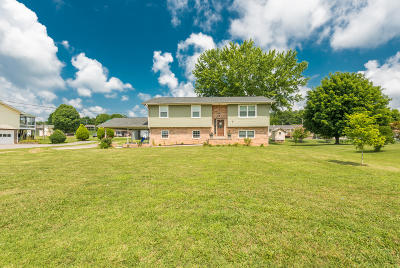 Union County Single Family Home For Sale: 1624 Tazewell Pike