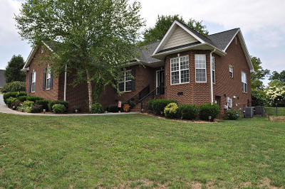 Sevierville Single Family Home For Sale: 1454 Benjamin Blvd