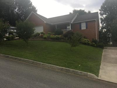 Knoxville Single Family Home For Sale: 5006 Omega Terrace Lane