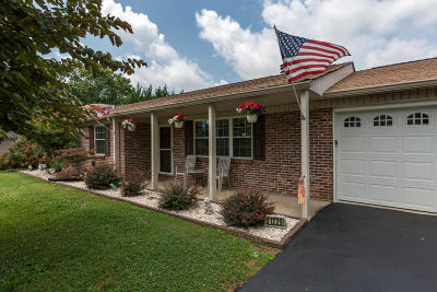 Knoxville Single Family Home For Sale: 11229 Concord Woods Drive