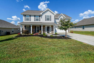 Maryville Single Family Home For Sale: 107 Bellas Way